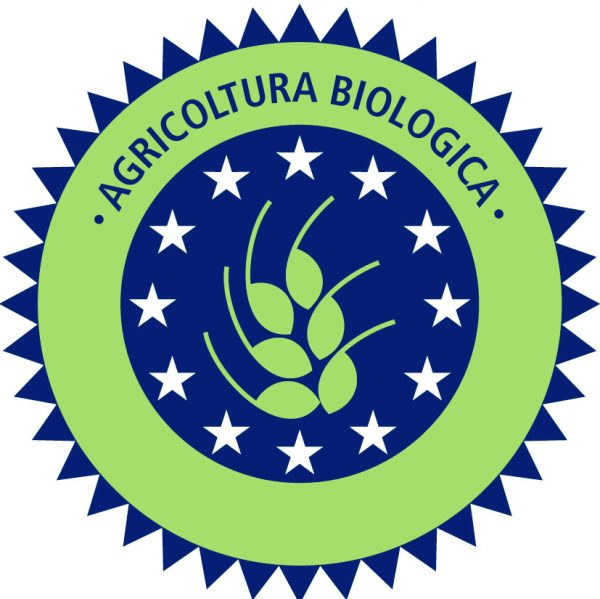 vino-biologico1-600x599